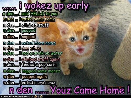 Funny-pictures-lolcats-an-den-an-den-an-den via icanhazcheezburger