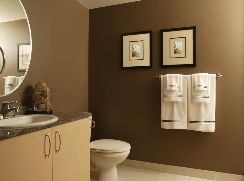 Clean_bathroom via allisonvolk.wordpress_com
