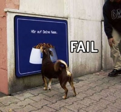 Dog food fail via funny-pictures-everyday.blogspot